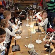 Очередные детские повязушки пройдут в воскресенье 25 ноября в 12-00