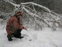 Плотва: первый лёд на запрудах