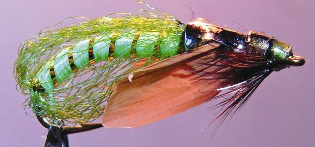 Сocoon green pupa