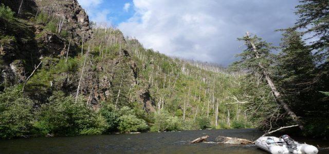 На встрече нахлыстовых энтузиастов 1 марта в 18-00 расскажем о рыболовных турах на реки Анюй и Тугур