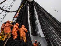 Очки Costa из переработанных рыболовных сетей