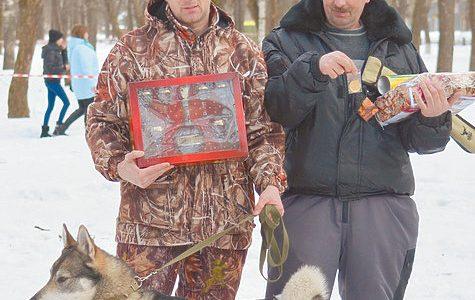 В Вологде прошла областная выставка охотничьих собак