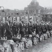 Братья меньшие — участники войны