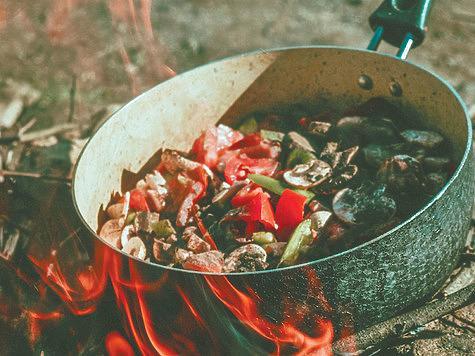 Кабан — вкусный биоресурс